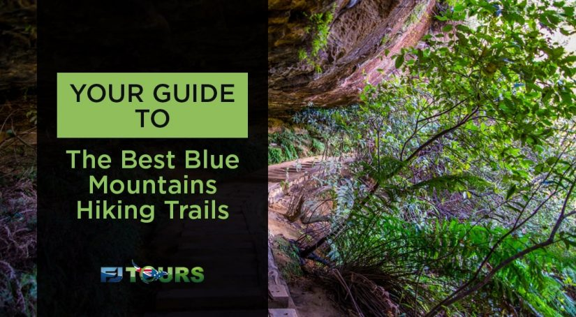 guide to the best blue mountains hiking trails