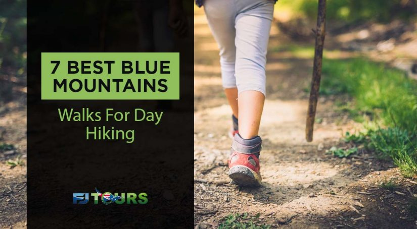 blue mountains walks for day hiking