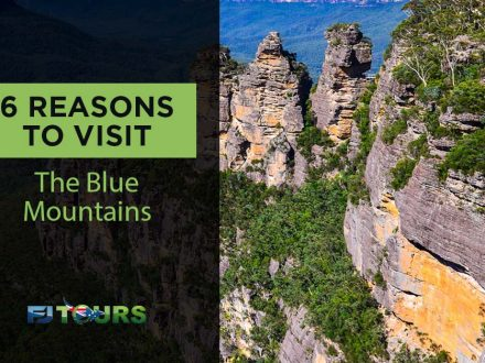 6 reasons to visit the blue mountains