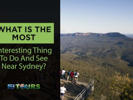 What is the most intesting thing to do and see in sydney