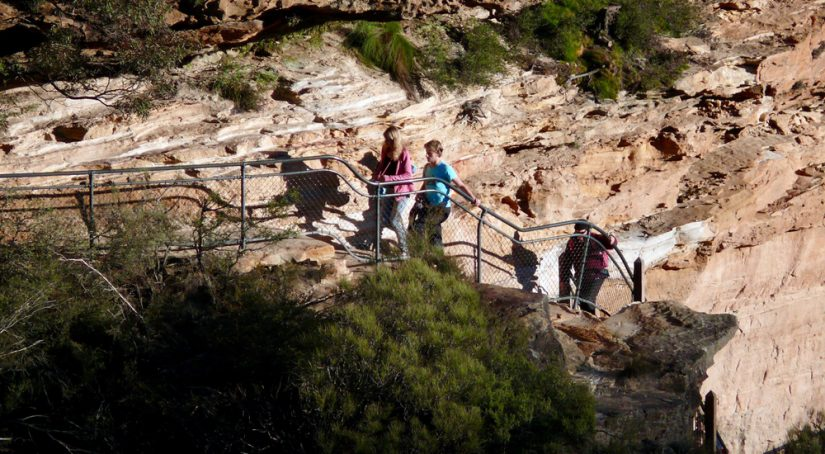 Best Hiking Trails In Blue Mountains