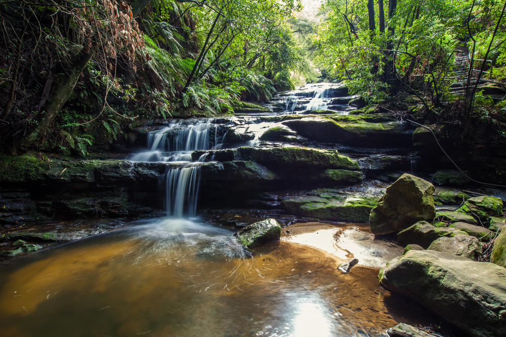 Blue Mountains Day Tours From Sydney - Leura Falls