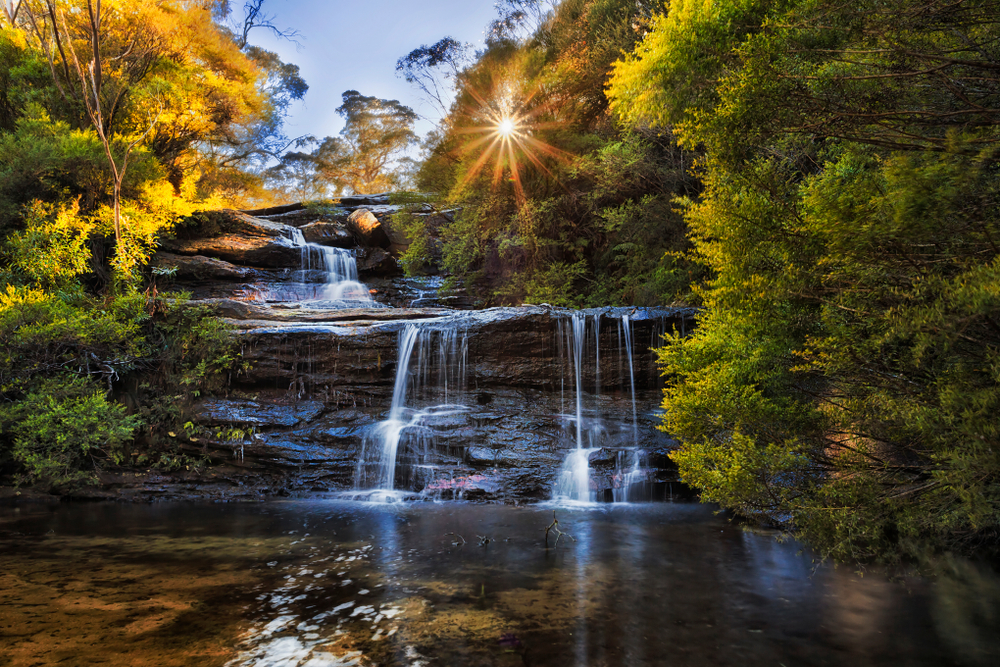 Blue Mountains Tours Wentworth Falls hiking trail